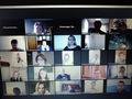 Члены Общественной палаты приняли участие в онлайн заседании с МРГ ОПМО