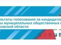 Опубликованы результаты голосования за кандидатов в члены Общественной палаты