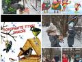 """Общественники провели акцию """"Покорми птиц зимой"""""""