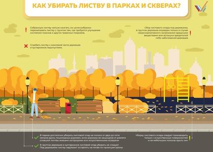 Рекомендации по регулированию уборки листового опада в Москоской области